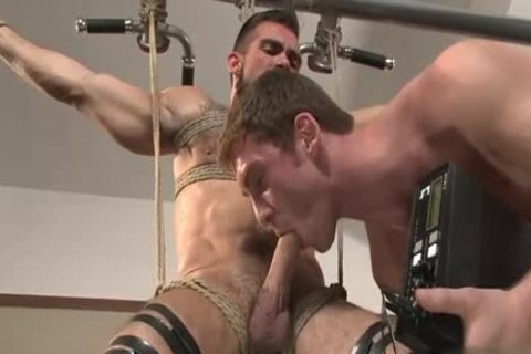 large 10-Pounder gay tied With Facial