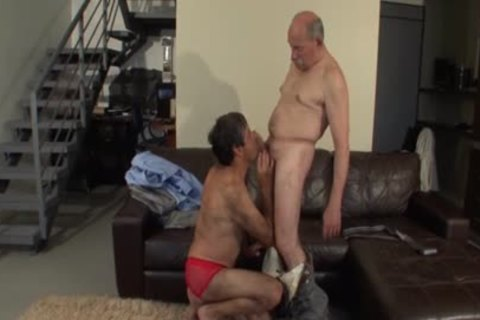 Two Daddies Having enjoyment