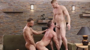 Icon Male: American Skyy Knox reverse cowgirl indoor