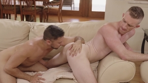 IconMale - Shane Jackson impressed by american Nick Fitt